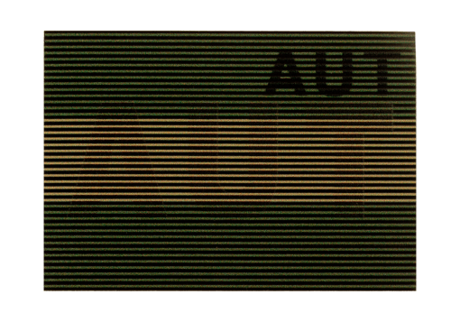 Dual IR Patch AUT RAL7013