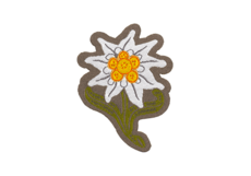 Edelweiss-Patch-Color-Clawgear