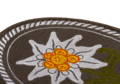 Edelweiss Patch Oval Color