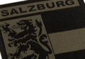 Salzburg Shield Patch RAL7013
