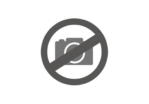 SI Ballistic Shocktube Grey Tan (Oakley) - Eyewear - Protective Equipment -  airsoft.ch Online shop 7c239d9e28